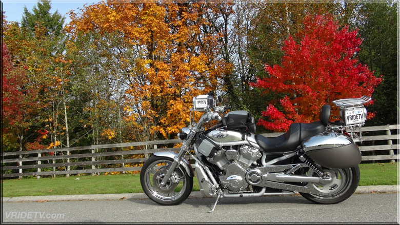 harley davidson vrod fall colours