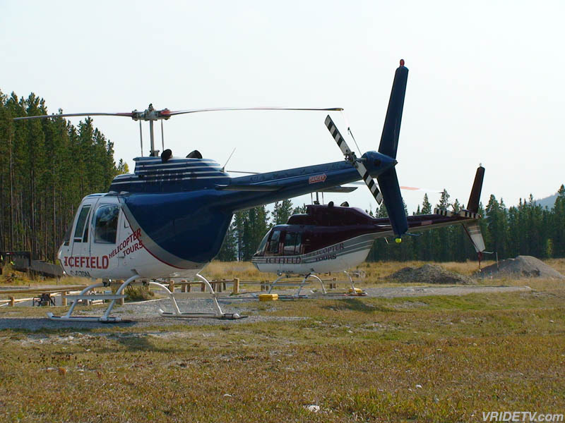 Icefield Helicopter Tours Reviews
